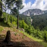 muntii hasmas, piatra singuratica, turism, turisti, natura, etica, etica in aer liber, peisaj, munti, munte, muntii carpati