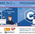 programare c++, muzeul antipa
