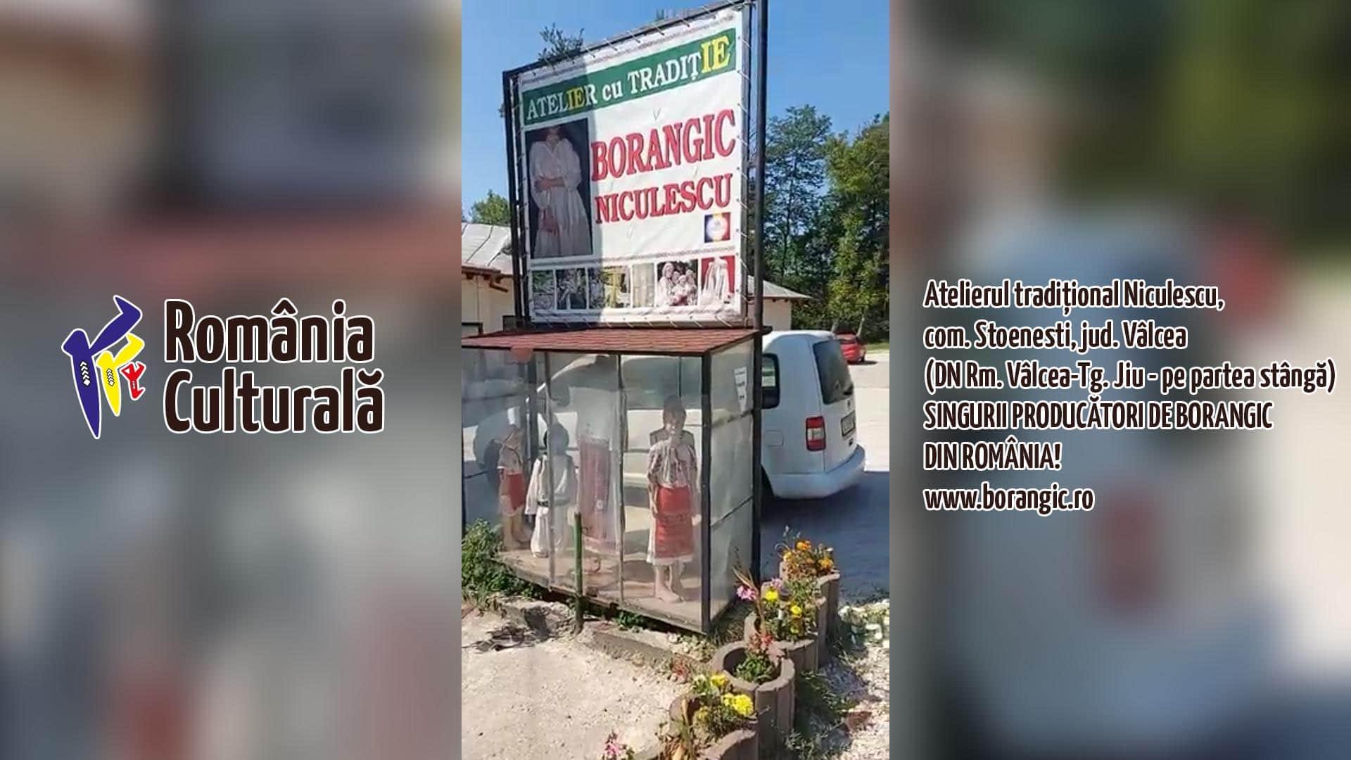 borangic.ro, borangic, borangic niculescu